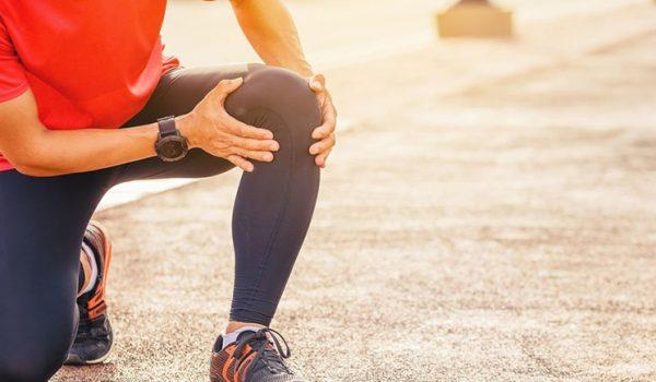articulaciones y musculos destacada